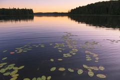 Lago wilderness en la puesta del sol Foto de archivo