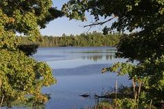 Lago wilderness enmarcado por los árboles Foto de archivo