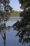 Lago wilderness in sole luminoso Fotografie Stock Libere da Diritti
