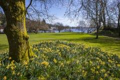 Lago Windermere na mola Fotos de Stock Royalty Free