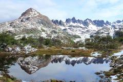 Lago Windhond som fotvandrar strömkretsen, Isla Navarino, Chile Royaltyfria Bilder