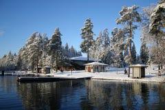 Lago winter Fotografie Stock Libere da Diritti