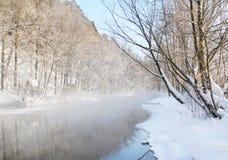 Lago winter Immagine Stock