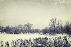 Lago winter e árvores, foto do estilo do vintage Imagem de Stock Royalty Free