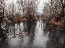Lago winter foto de archivo libre de regalías