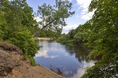 Lago woodland Imagens de Stock