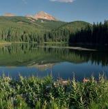Lago woods Fotografie Stock