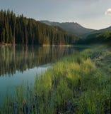 Lago woods Immagini Stock Libere da Diritti