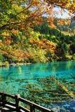 Lago Wu Hua in autunno Fotografie Stock