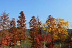 Lago XiangHu Foto de Stock