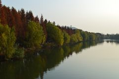 Lago XiangHu Imagens de Stock Royalty Free