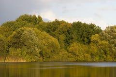 Lago y árboles Foto de archivo