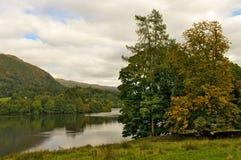 Lago y árboles fotografía de archivo libre de regalías