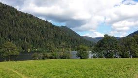 Lago y árboles imagen de archivo
