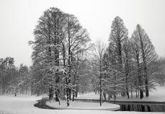 Lago y árboles en invierno Fotografía de archivo libre de regalías