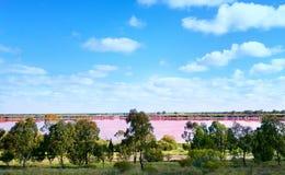 Lago y árboles rosados de sal en Australia occidental Fotos de archivo