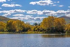 Lago y abedul blanco Imagen de archivo