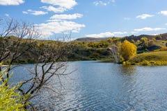 Lago y abedul blanco Fotografía de archivo