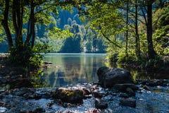 Lago y arroyo Foto de archivo