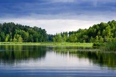 Lago y bosque. Imagen de archivo libre de regalías