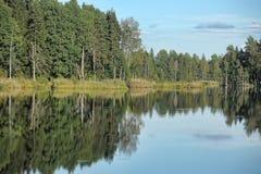 Lago y bosque foto de archivo