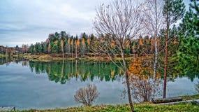 Lago y bosque autumn fotos de archivo libres de regalías