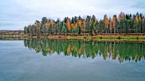 Lago y bosque autumn imagen de archivo