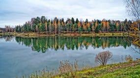 Lago y bosque autumn imagenes de archivo
