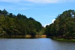 lago y bosque, Costa Rica foto de archivo