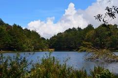 lago y bosque, Costa Rica imagenes de archivo