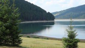 Lago y bosque dam del agua almacen de video