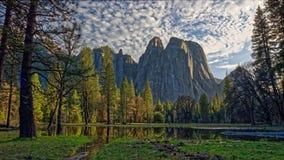 Lago y bosque del pino, parque nacional de Yosemite, California imágenes de archivo libres de regalías