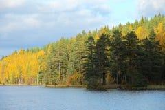 Lago y bosque en colores del otoño Fotografía de archivo