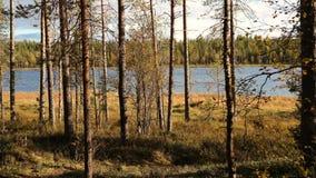 Lago y bosque en otoño Imagen de archivo