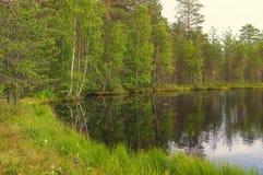 Lago y bosque landscape Fotos de archivo