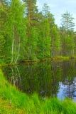 Lago y bosque landscape Imágenes de archivo libres de regalías