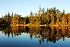 Lago y bosque spider en la puesta del sol Fotografía de archivo