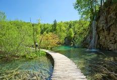 Lago y cascada Imagen de archivo libre de regalías