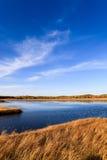 Lago y humedal en el otoño Imagenes de archivo