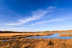 Lago y humedal en el otoño Fotografía de archivo libre de regalías