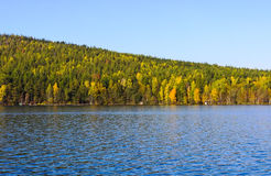 Lago y madera del otoño Fotos de archivo