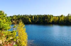 Lago y madera del otoño Foto de archivo libre de regalías