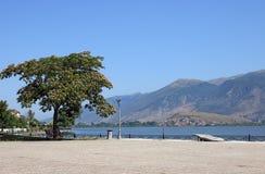 Lago y montaña ioannina Foto de archivo libre de regalías