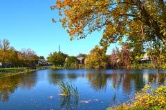 Lago y otoño de oro Imagenes de archivo