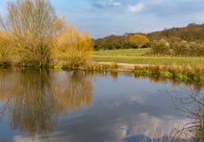 Lago y parque en la primavera Fotografía de archivo libre de regalías