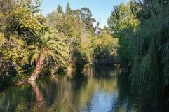 Lago y puente de madera en un parque Foto de archivo libre de regalías