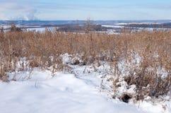 Lago y río congelados de desatención spring Imagenes de archivo