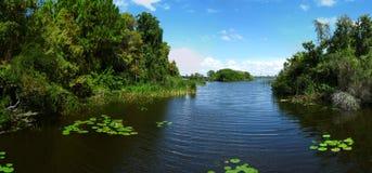 Lago y vegetación en sus baterías Fotos de archivo libres de regalías