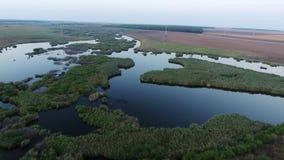 Lago y vegetación vistos de abejón almacen de metraje de vídeo