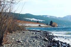Lago y viñedos de la playa del invierno Foto de archivo